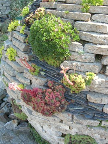 Pin By Amanda On Urbanite Retaining Wall Ideas Recycled Concrete Recycled Garden Landscaping Supplies