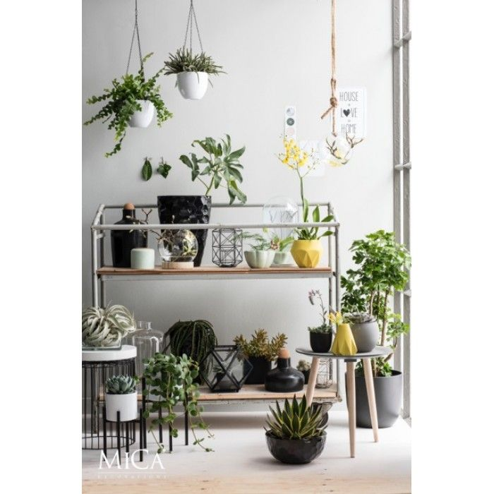 Mica Decorations zwarte plant standaard Ascot 1006647