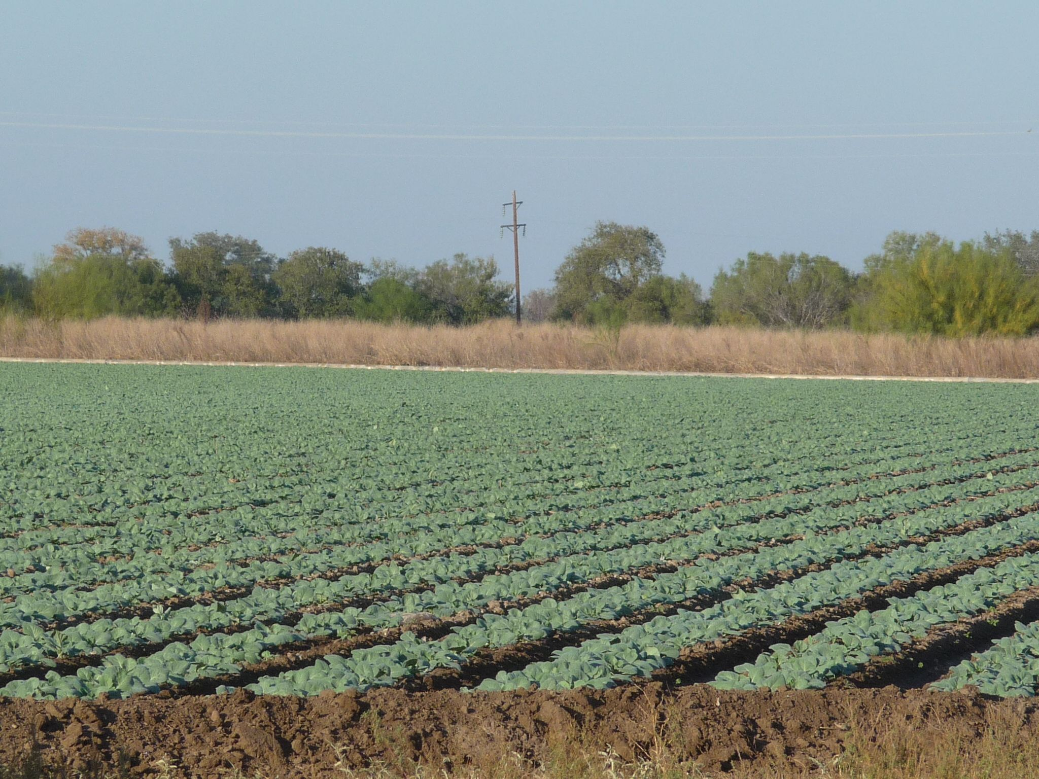 Crystal city texasfarm and ranch san antonio military