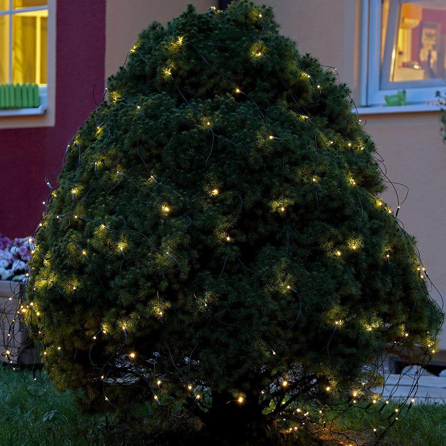 sch ne dekoidee lichternetz auf einem busch im garten f r die weihnachtsbeleuchtung. Black Bedroom Furniture Sets. Home Design Ideas