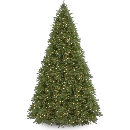 Home Christmas Tree Clear Lights Fir Christmas Tree Fraser Fir Christmas Tree