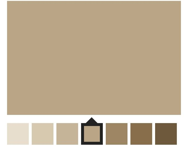 Latte. Sherwin Williams 6108. Love This Color In My Living