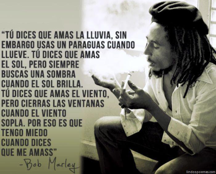 Vino Y Girasoles Bob Marley Bob Marley Pinterest Bob Marley