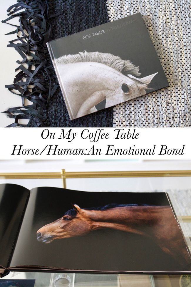 On My Coffee Table HorseHuman An Emotional Bond Horse