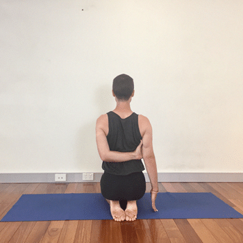iyengar yoga poses for shoulders  yoga selection