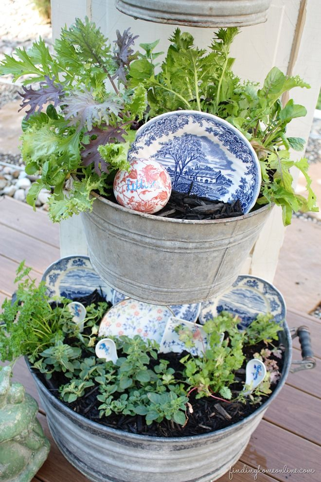 Diy Backyard Kitchen Herb Garden Stuff For My Favorite Place