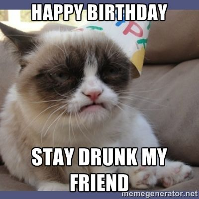 happy birthday bestie  google search  grumpy cat humor