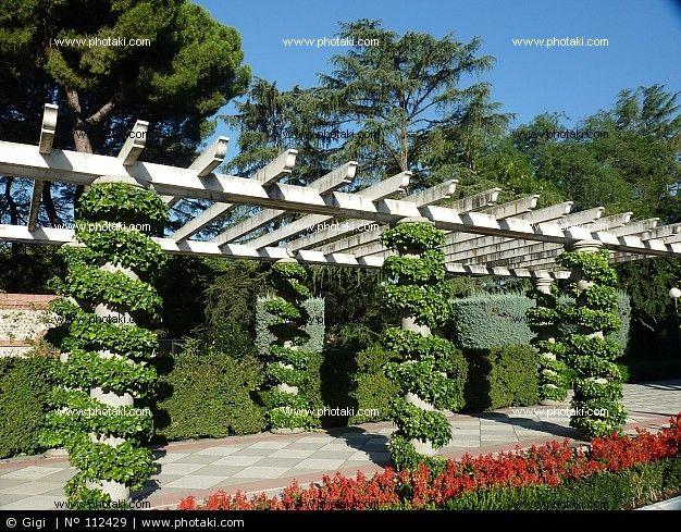Pictures Columns with ivy pergola, Cecilio Rodriguez Gardens, Madrid ...