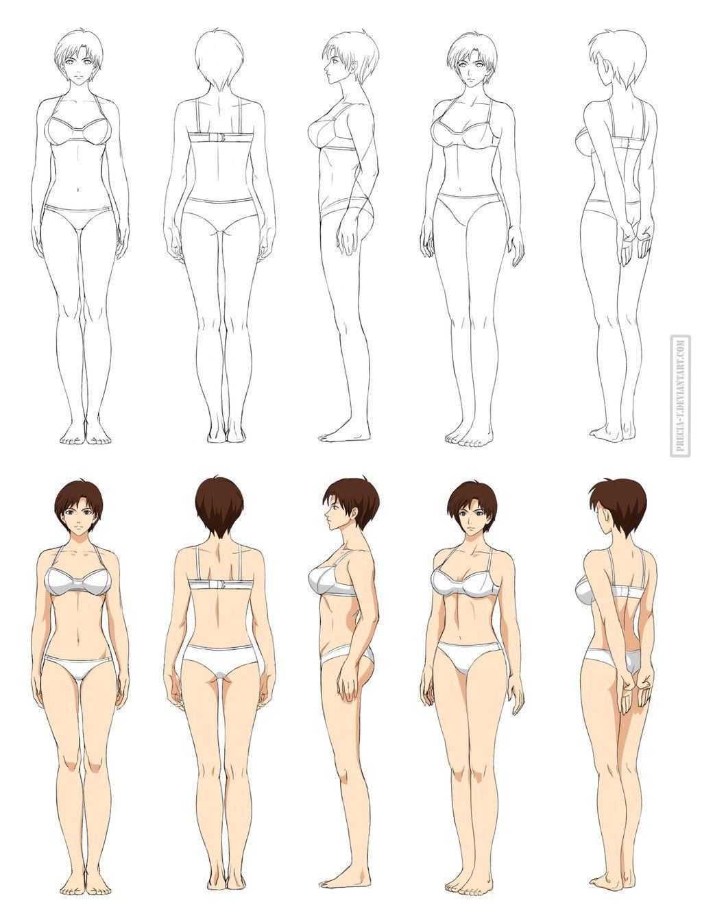 Anime anatomy, full body (commission) by Precia-T.deviantart.com on ...