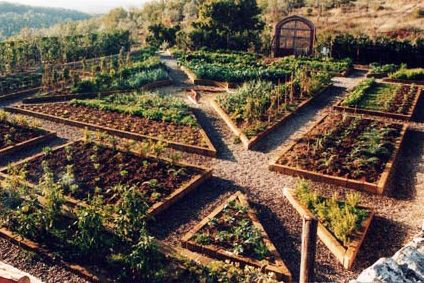 Landscaping contractor los angeles burbank southern italian vegetable garden use of triangular beds to create structured garden layout workwithnaturefo