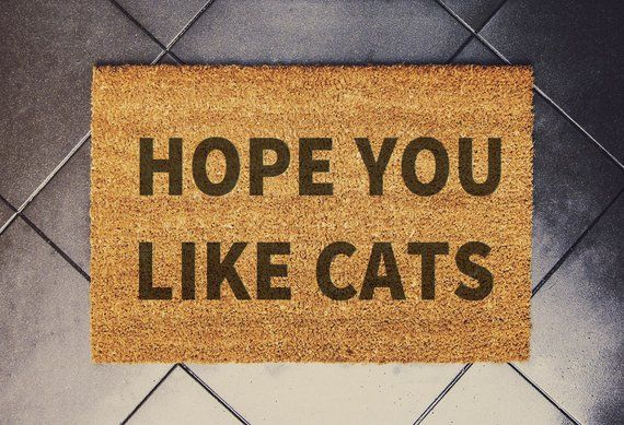 16 Gift Ideas for Cat Lovers | Gifts for Cat People | House One