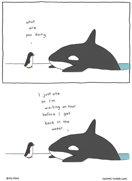 Animal Encounters Guaranteed To Cheer You Up By Liz Climo