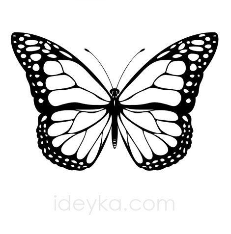 plantilla tattoo\u0027s animales Pinterest