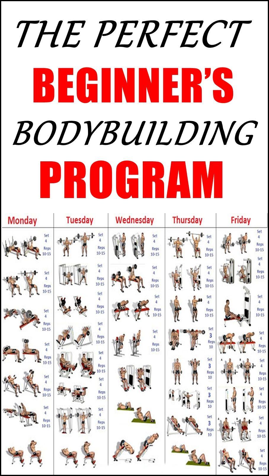 THE PERFECT BEGINNER'S BODYBUILDING PROGRAM | Best pre