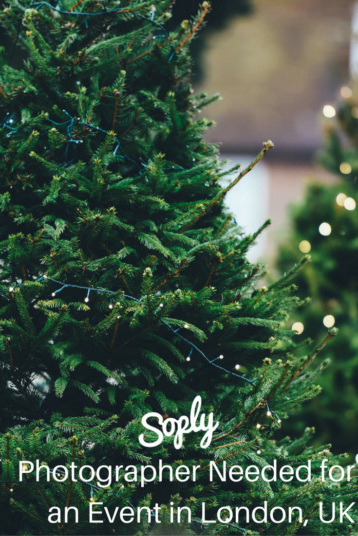 Photographer Needed For A Christmas Party In London Uk The Party