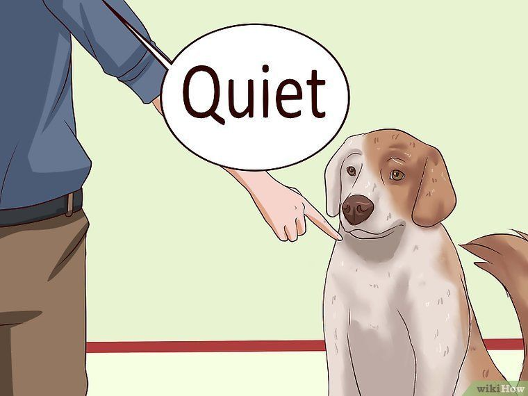 5 Ways To Get Dogs To Stop Barking Wikihow Dog Training Barking Stop Dog Barking Dog Training