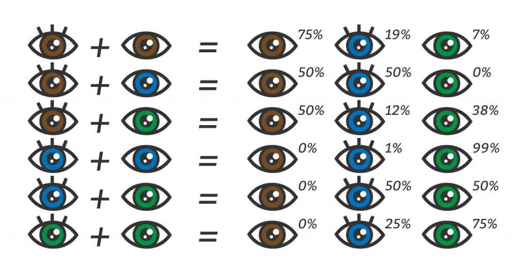 When Do Babies Eyes Change Color Will They Stay Blue Baby Eye Color Chart Eye Color Chart Eye Color Change
