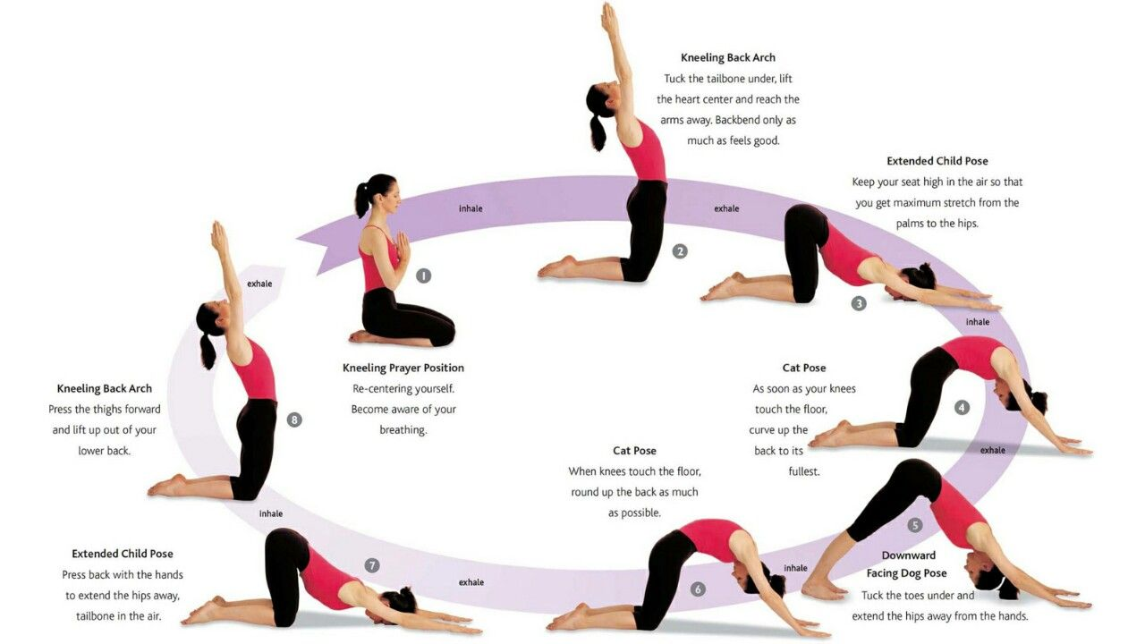 Kneeling Sun Salutations Yoga Moves Postnatal Yoga Yoga Body
