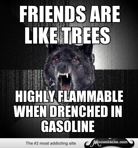 Insanity Wolf Friends Are Like Trees Insanity Wolf Insanity