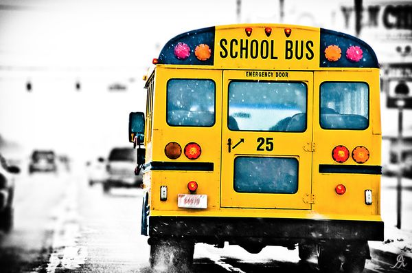 Http Www Printedart Com Content School Bus 0 Alessandro Giorgi School Bus Available With Acrylic Finish For A Float On Th School Bus Bus School Images