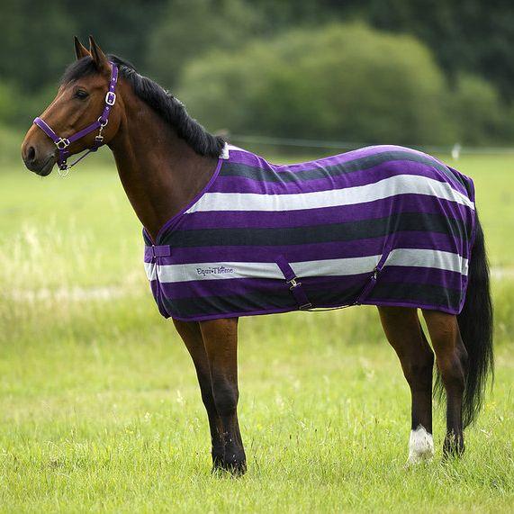 Attractive Equi Theme Stripe Polar Fleece Rug: £29.99