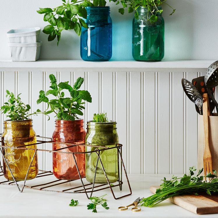 Garden jar herb kit herbs indoors mason jar herbs herb