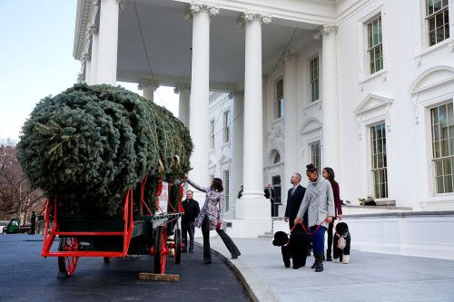 First Lady Michelle Obama, with daughters Sasha and Malia and family pets Bo and Sunny, receives the official White House Christmas tree at the North Portico of the White House, Nov. 28, 2014. (Official White House Photo by Chuck Kennedy)