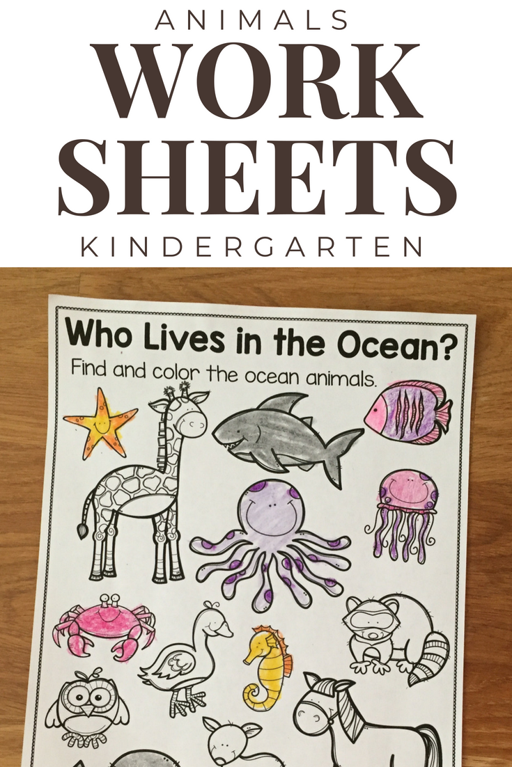 Farm Zoo Forest And Ocean Animals Picture Cards And Worksheets Ocean Animals Pictures Ocean Animals Picture Cards [ 1102 x 735 Pixel ]