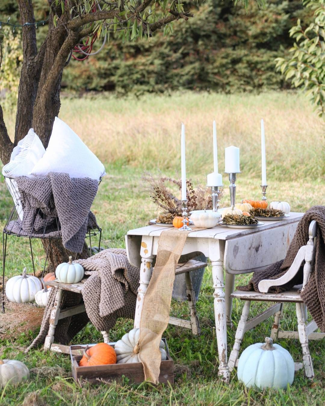 Outdoor Entertaining Pumpkins Blankets Ceilings Rugs Comforters Squashes Gourd