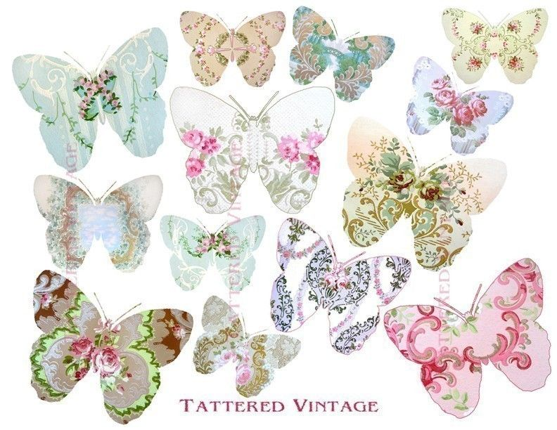 tattered vintage Wallpaper Butterflies Instant