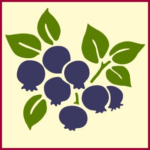 Blueberry Stencil Blueberries Blueberry Decor Kitchen Decor