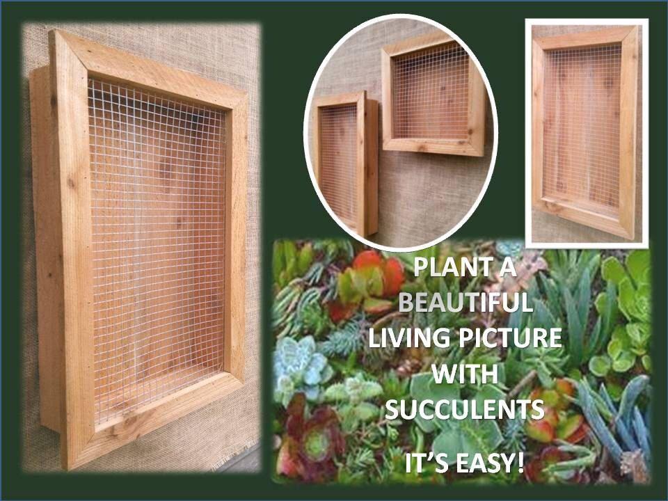 Reclaimed Wood Vertical Succulent Cedar Planter Box Wire Hanging Large Living Wall Art Herb Gardener Wedding
