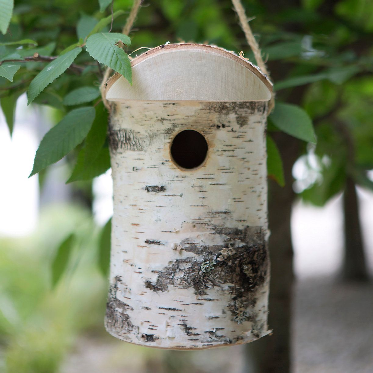 Hewn Birch Birdhouse, Small in New Garden at Terrain