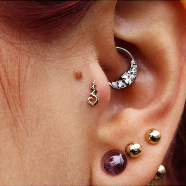Pin by Emily on WTNV Cecil Gershwin Palmer Pinterest Tragus