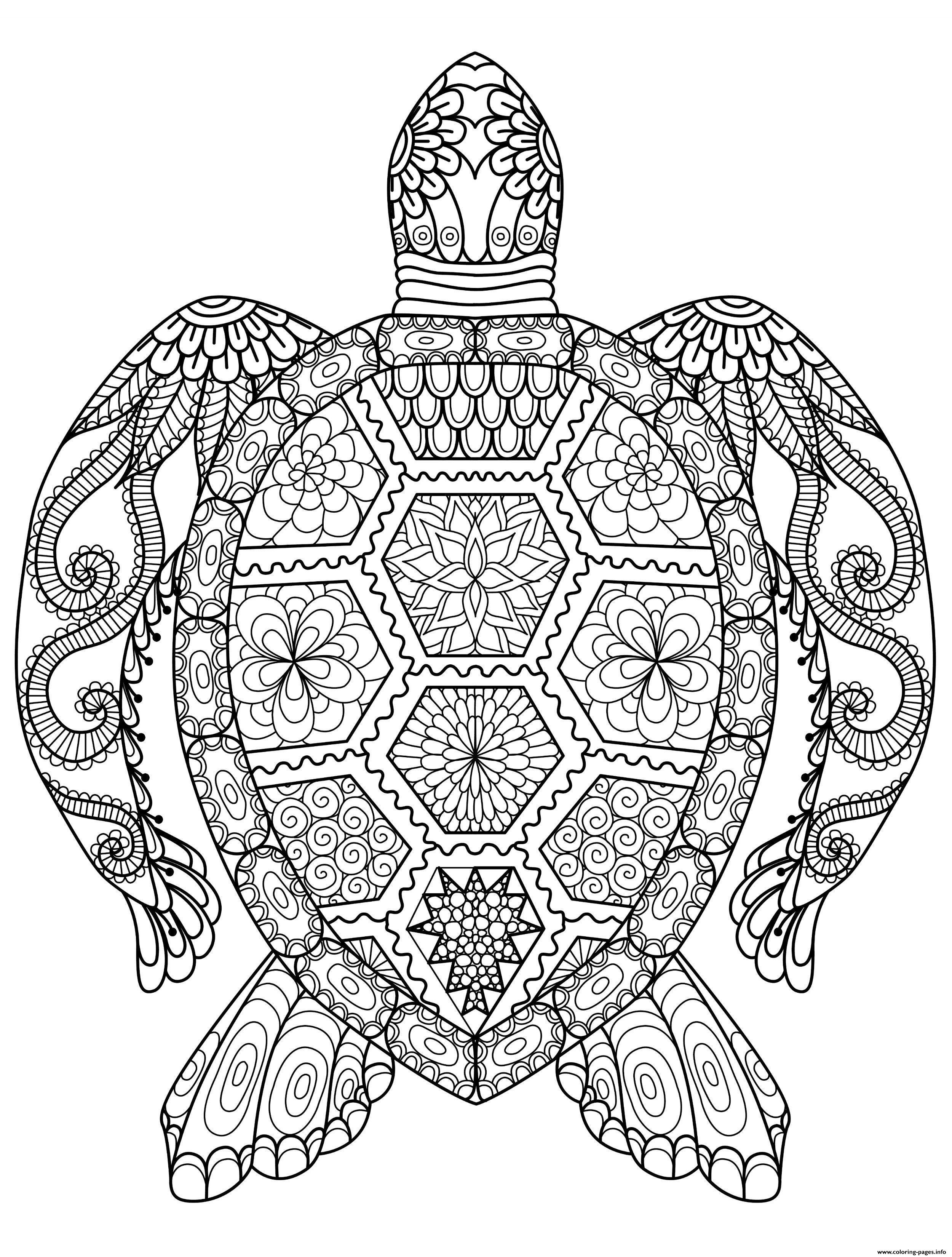 Turtle Coloring Pages Printable Azspringtrainingexperience