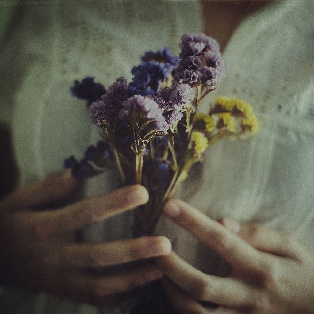 floralls:  my kind of summer (by Ana Luísa Pinto [Luminous Photography])
