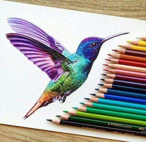 Imagem de drawing, art, and bird