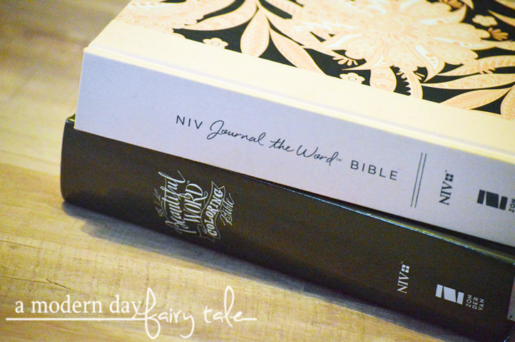 A Modern Day Fairy Tale Journaling Bibles For The Teen Girl On Your