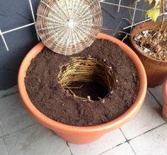 Kompost auf dem Balkon