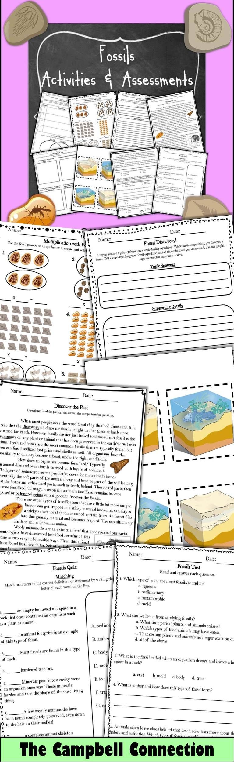 Fossils Non-Fiction Passages and Assessments Bundle!   Earth science  lessons [ 2496 x 768 Pixel ]