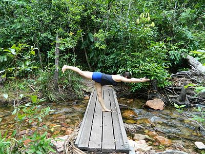 warrior 3 in nature » yoga pose weekly  yoga photos