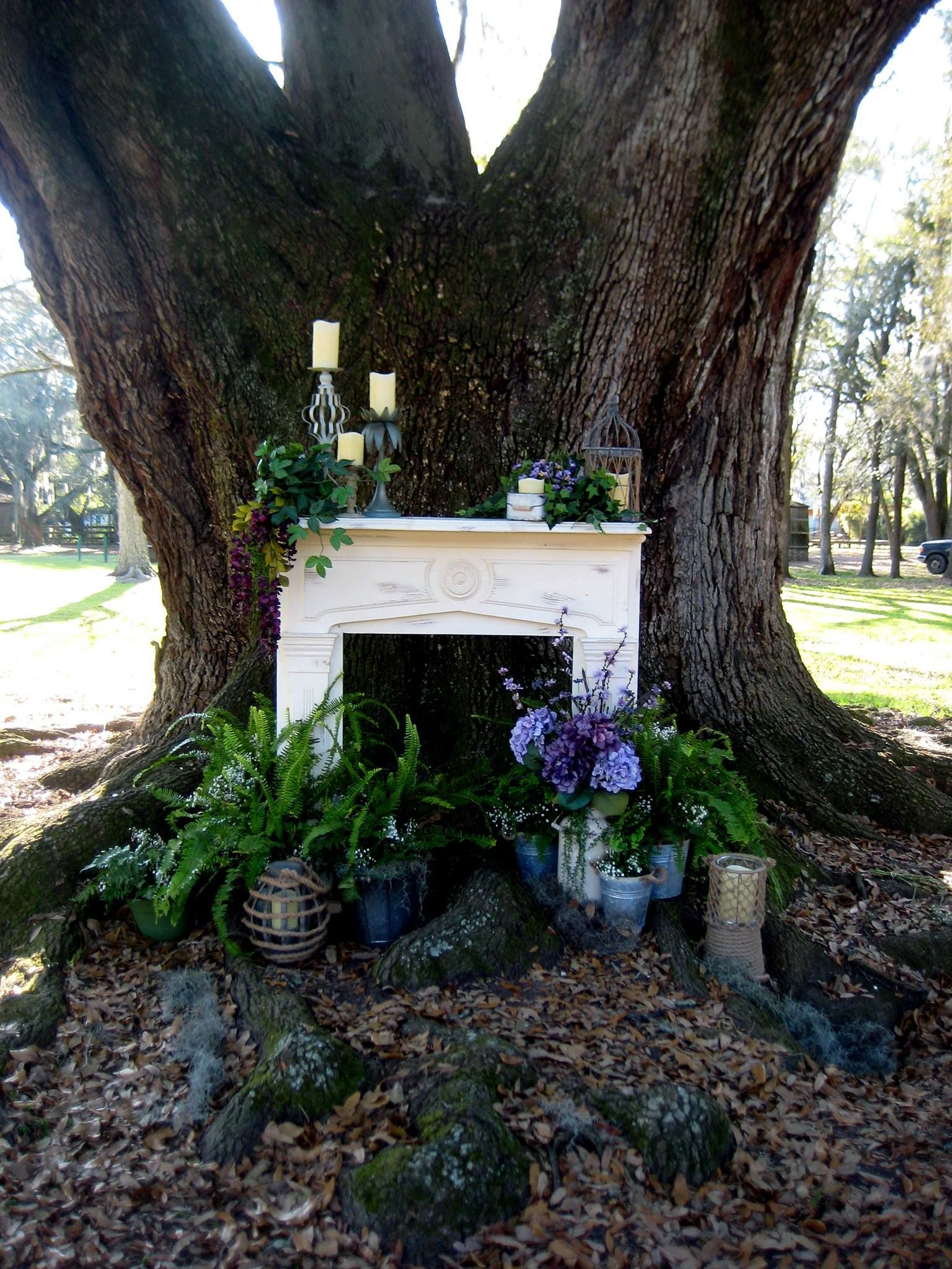 Wedding Ceremony Setup under Live Oak tree. (Azby Oak) in