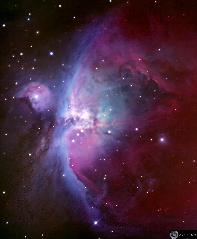 Orion Nebula Through My Telescope 2556x3108 Oc Http Ift Tt 2f5mdmo Orion Nebula Nebula Orion