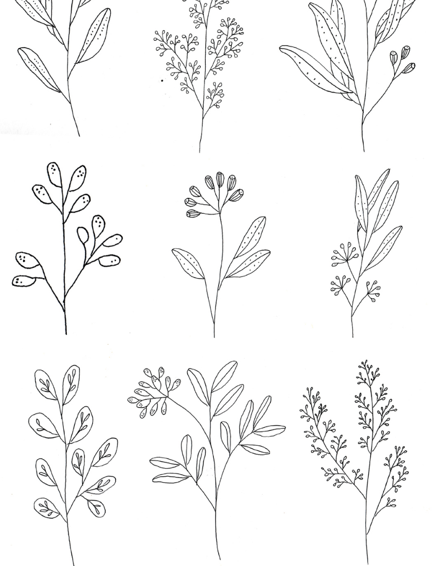 Pin By Vanessa Tan On Country Flower Drawing Flower Sketches Floral Drawing