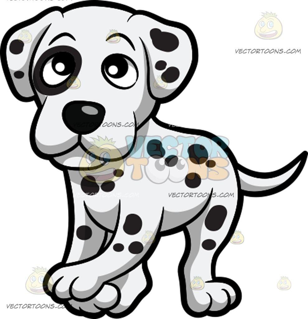 White Dog With Black Spot On Eye Name