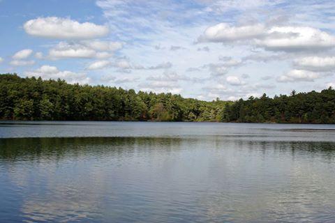 L.L.Bean's photo.  Walden Pond, Concord, Massachusetts