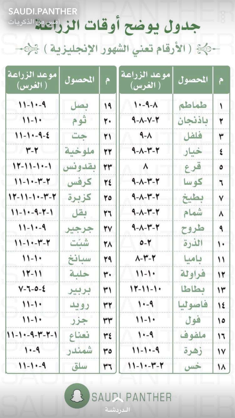 سعودي بانثر Veg Garden Useful Life Hacks Words