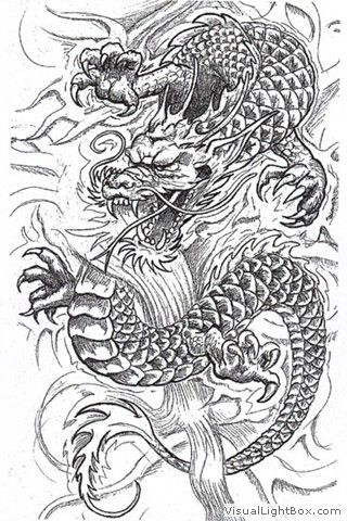Wallpapers Images Photos Pour Dessin Dragon Japonais Tatouage