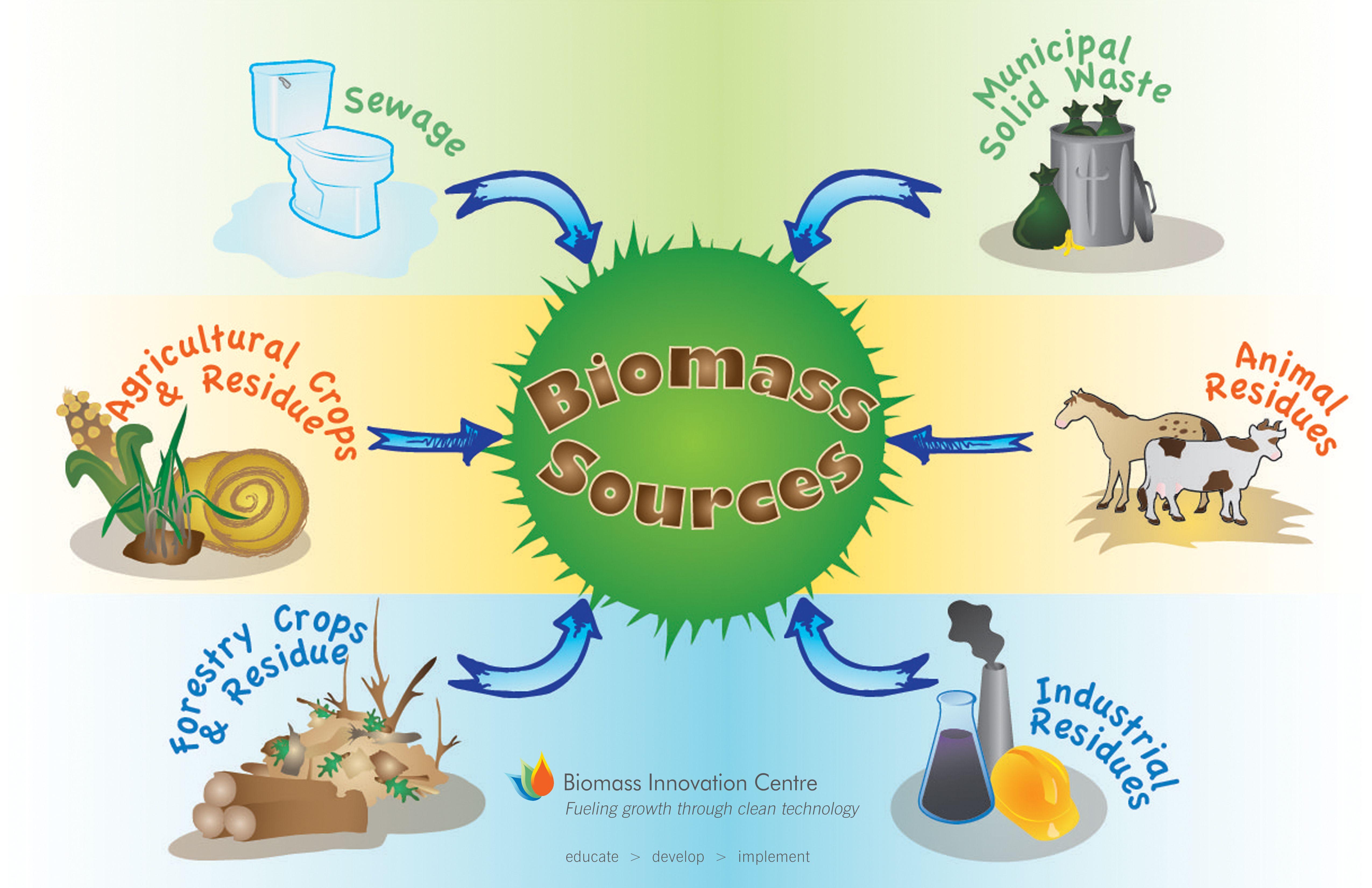 Biomass - Lessons - Tes Teach | Biomass | Biomass energy ...
