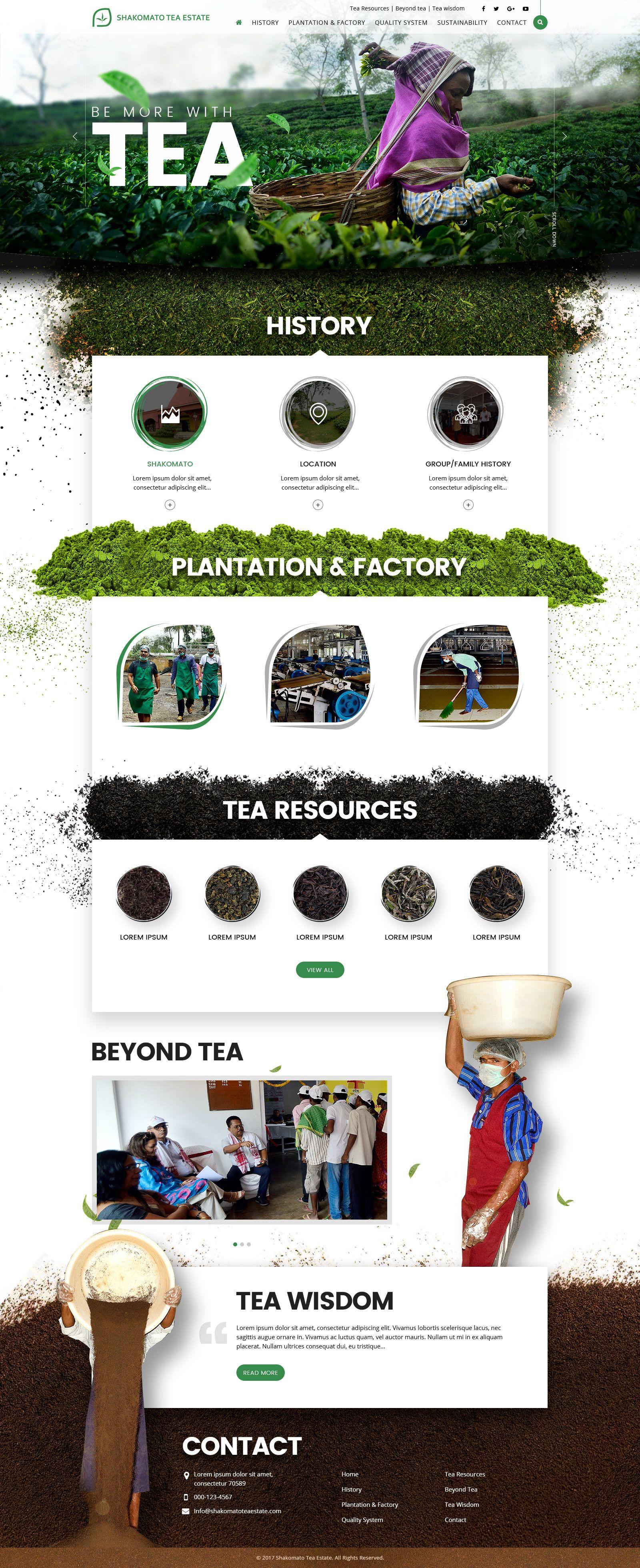 Website Design Tea Processing Webdesign Tea Sajt Dizajn Kofe